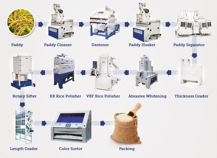 Rice-Processing-Process-Satake-Machines